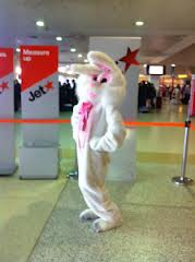 Director of Lovelly Communications, Emma Lovell is inside the bunny suit- striking the promo pose. A great Mash Promotion